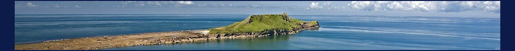 worms_head_01.jpg